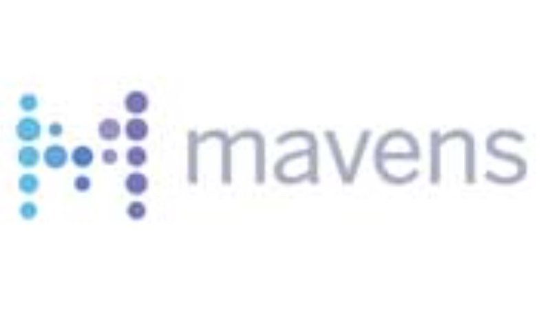 The 2016 Fastest Growing Firms: Mavens