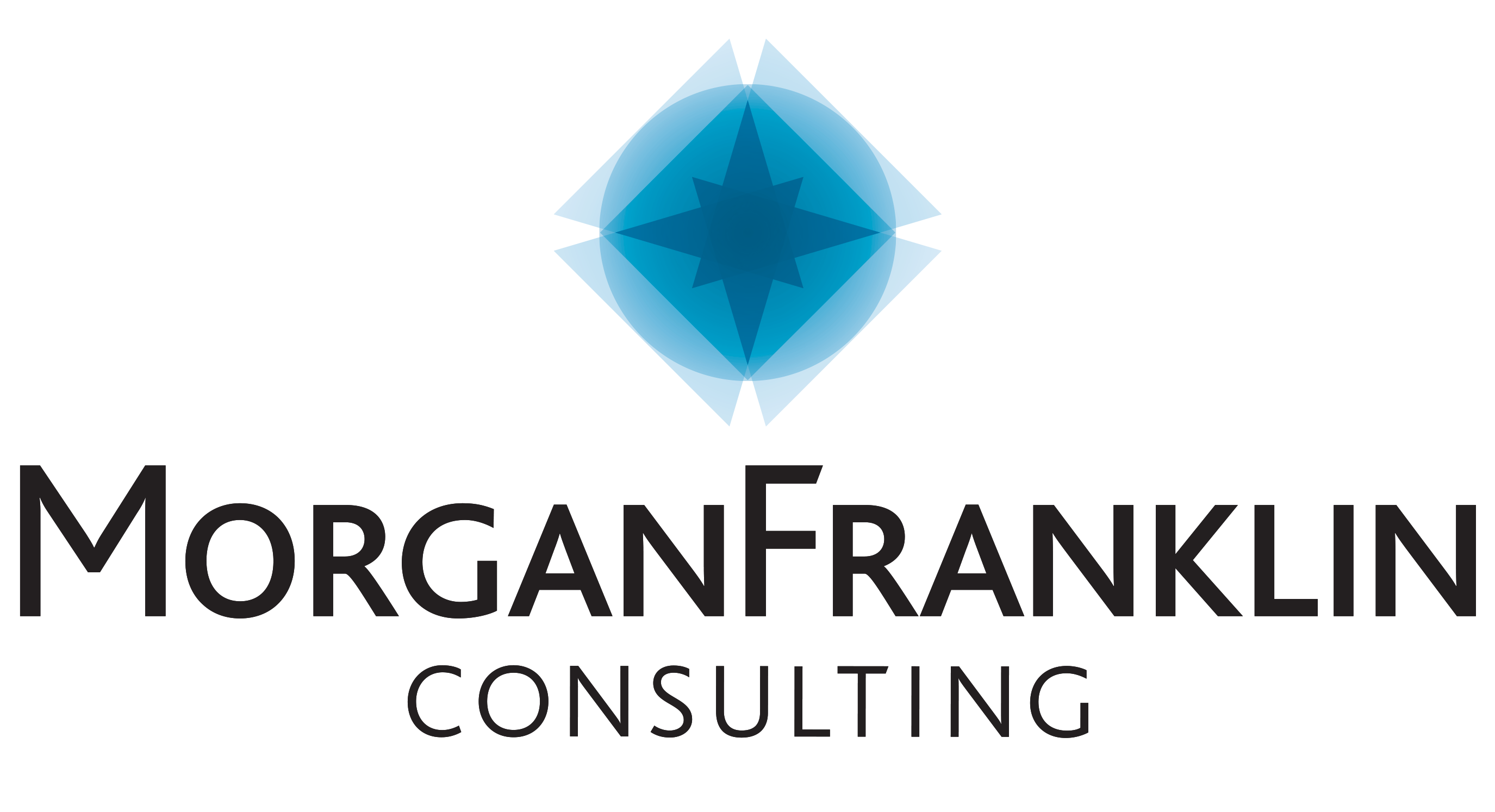 The 2019 Fastest Growing Firms: MorganFranklin Consulting