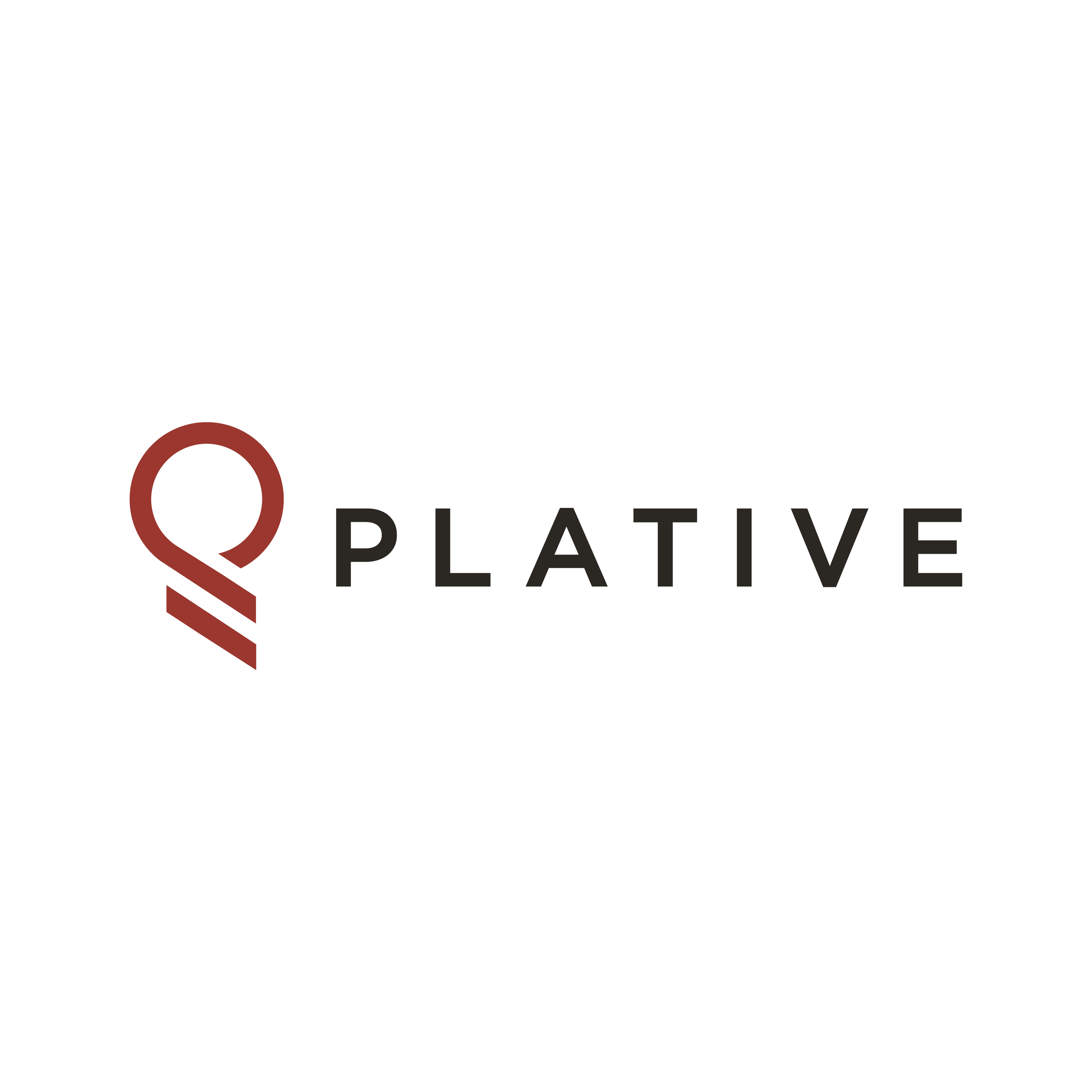 The 2019 Fastest Growing Firms: Plative