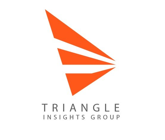 The 2019 Fastest Growing Firms: Triangle Insights Group